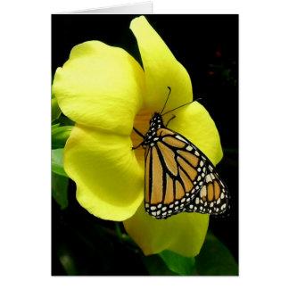 Buttefly sur la carte de voeux jaune d'amitié de