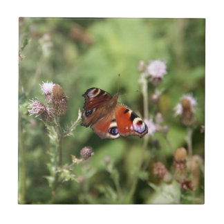 Butterflying Petit Carreau Carré