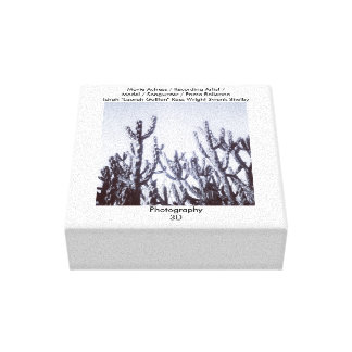 cactus 3D en noir et blanc Toiles