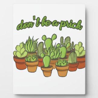Cactus Plaques D'affichage