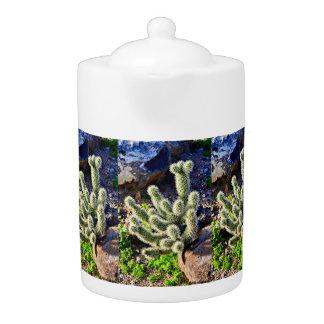 Cactus sur le pot de thé de roche