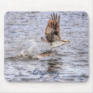 Cadeau de photo de faune de HDR de balbuzard et de Tapis De Souris