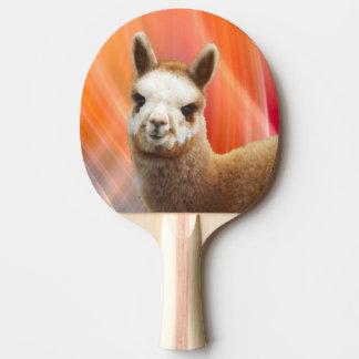Cadeau mignon d'alpaga raquette de ping pong