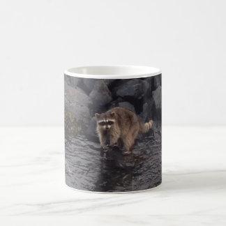 Café de raton laveur mug magic