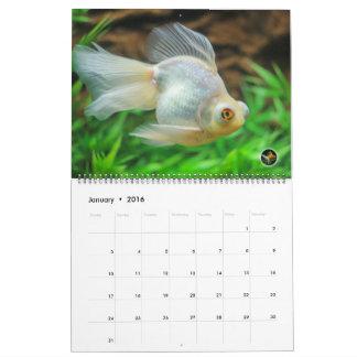 Calendrier 2016 surdimensionné de poisson rouge