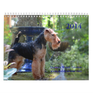 Calendrier de gallois Terrier 2014 par Darwyn