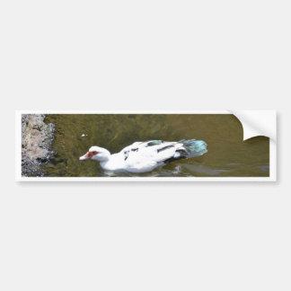 Canard blanc autocollant de voiture
