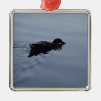 Canard de natation dans le lac, bleu de faune ornement carré argenté
