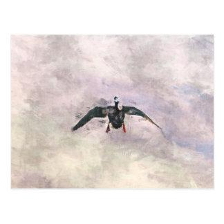 Canard de vol cartes postales