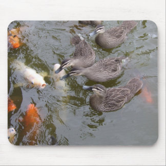 Canards contre Koi - Mousepad Tapis De Souris