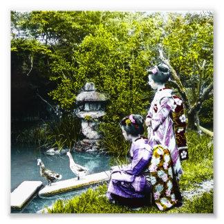 Canards de observation de geisha vintage en parc photographie