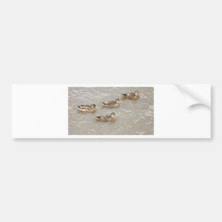 Canards nageant autocollant de voiture