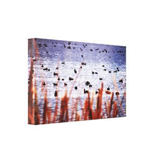 Canards sur une copie de toile d'étang