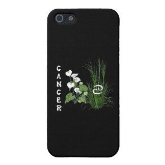 Cancer de bambou et de lis coques iPhone 5