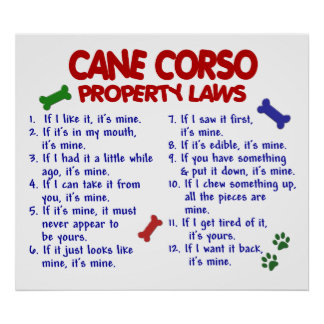 CANNE CORSO PL2 POSTER