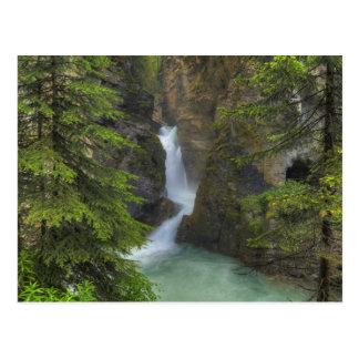 Canyon de Johnston Carte Postale