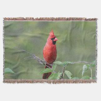 Cardinal du nord couvertures