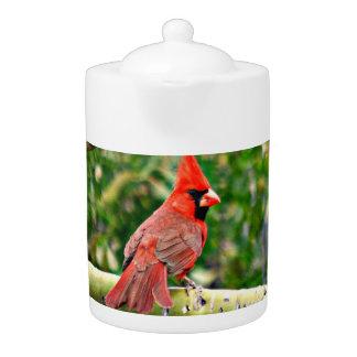 Cardinal sur un pot de thé de membre