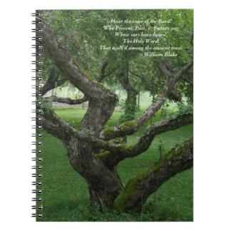 Carnet antique de photo d'arbres (80 pages B&W)