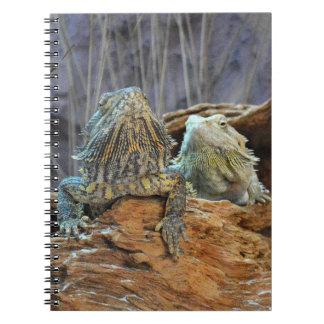 Carnet avec deux lézards curieux