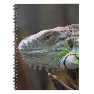 Carnet avec la tête du lézard coloré d'iguane