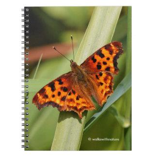 Carnet Beau papillon de virgule orange de satyre
