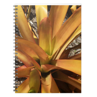 Carnet Bromeliad jaune