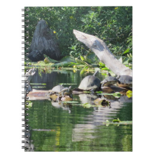 Carnet brumeux de photo de crique (80 pages B&W)