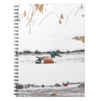 Carnet Canard d'hiver