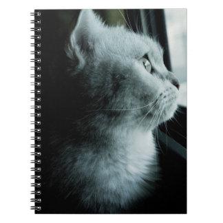 Carnet Chat mignon regardant par la fenêtre