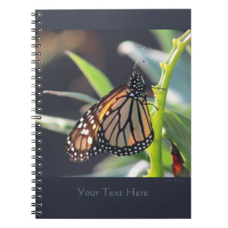 Carnet de notes à spirale 2 de papillon de
