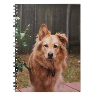 Carnet de notes à spirale avec la photo d'un chien