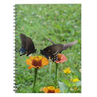 Carnet de papillons