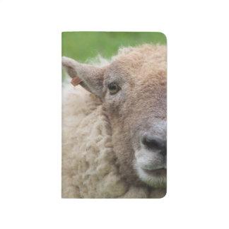 Carnet De Poche Moutons de mère