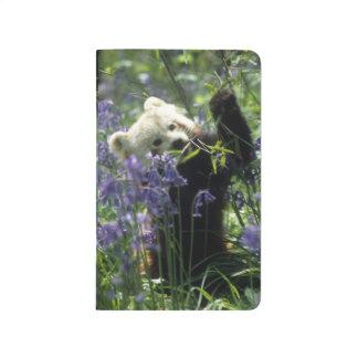 Carnet De Poche Panda rouge