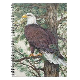 Carnet Eagle chauve sur la branche