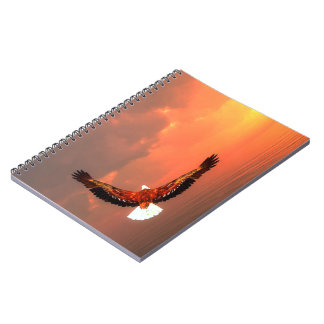 Carnet Eagle volant au soleil - 3D rendent