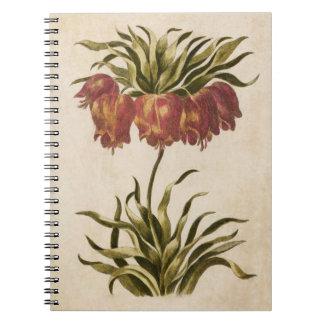 Carnet Impérial de couronne floral botanique vintage