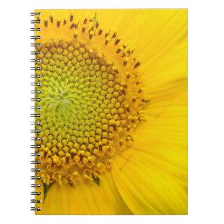 Carnet Le jardin floral de fleurs fleurit photographie