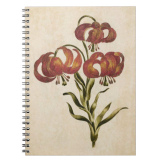 Carnet Lis de montagne floral botanique vintage