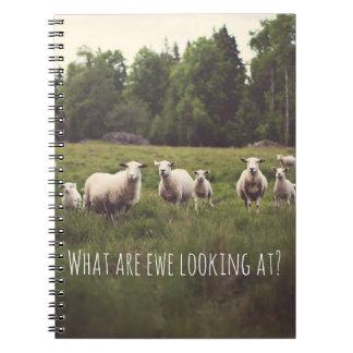 Carnet Moutons blancs et agneaux pelucheux mignons en