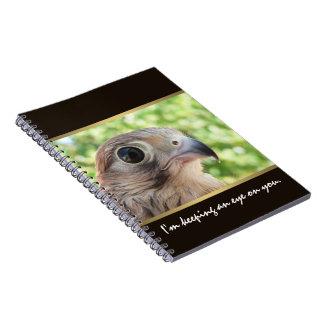 Carnet Oeil d'Eagle