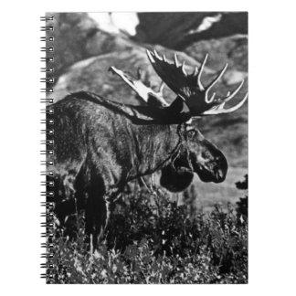 Carnet Orignaux 1970 de taureau des Etats-Unis Alaska de