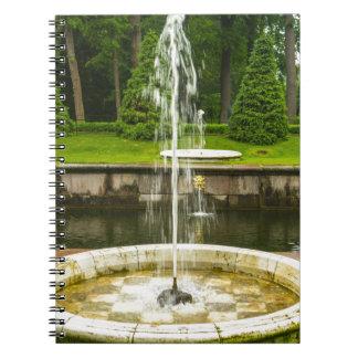 Carnet Palais et jardins St Petersburg Russie de Peterhof