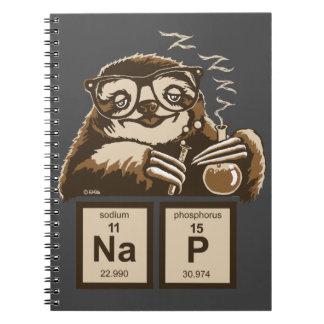 Carnet Petit somme découvert par paresse de chimie