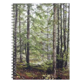 Carnet Plancher de forêt de Squamish