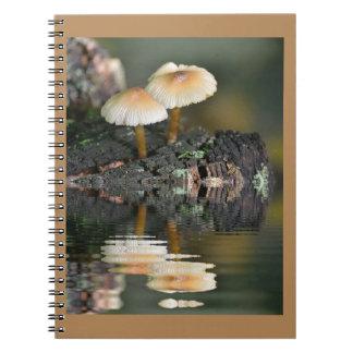 Carnet Réflexions de champignon