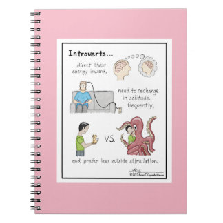 Carnet rose de fondements introvertis