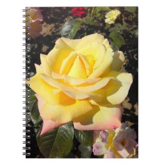 Carnet Roses de thé jaunes