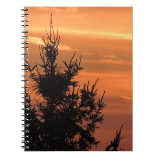 Carnet Silhouette d'arbre avec le coucher du soleil